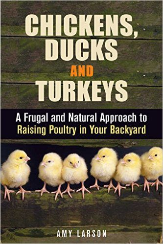 Chickens, Ducks and Turkeys: A Frugal and Natural Approach to Raising Poultry in Your Backyard (Backyard Farming & Homesteading)