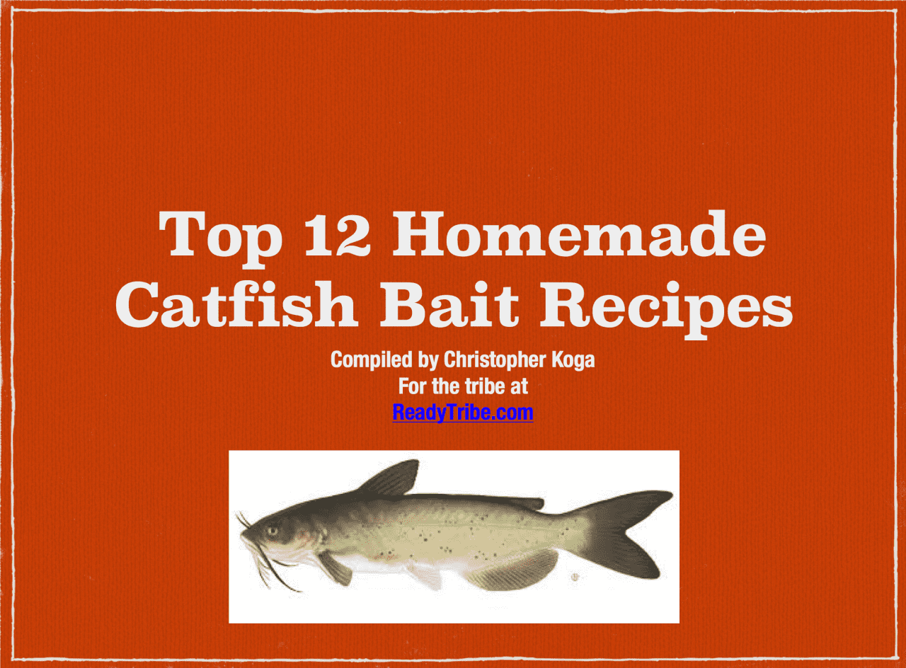 Homemade catfish bait top 12 catfish bait recipes for Homemade fish bait