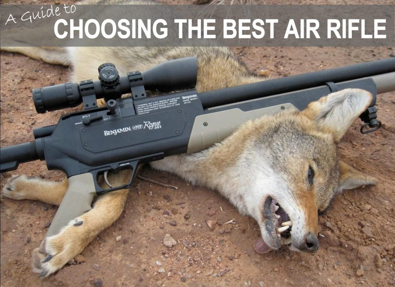 How To Pick The Best Air Rifle